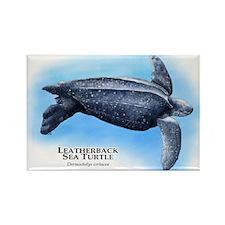 Leatherback Sea Turtle Rectangle Magnet