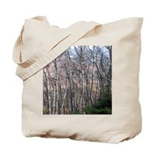 Birch Grove Tote Bag