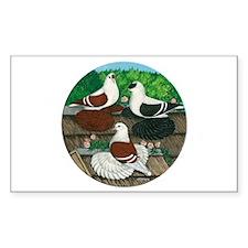 Saxon Pigeon Trio Rectangle Decal