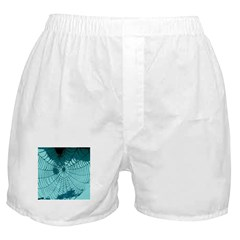 Spider Webs Boxer Shorts