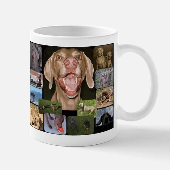 lvwcrstuff1 Mug