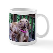 lvwcrstuff4 Mug