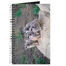 Meerkats Looking Left Journal