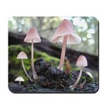 Delicate Forest Mushrooms Mousepad