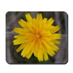 Yellow Flower Dandelion Mousepad