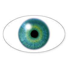 Big Eye Oval Decal