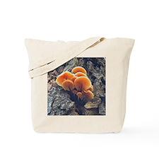 Orange Forest Mushrooms Tote Bag