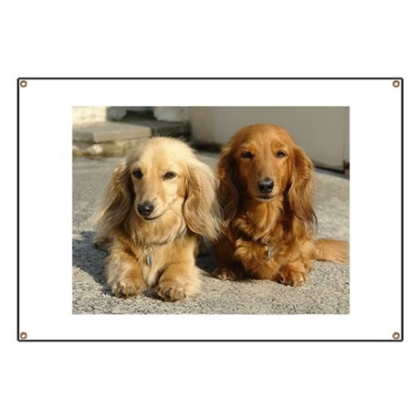 Doxie Pair Banner