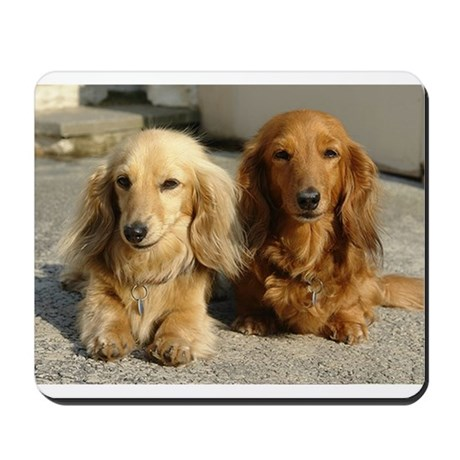 Doxie Pair Mousepad