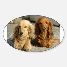 Doxie Pair Oval Decal