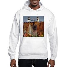 Cairn Terrier Squirrels Hoodie Sweatshirt