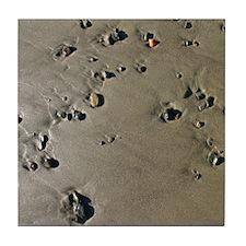 California Coast Beach Pebble Tile Coaster