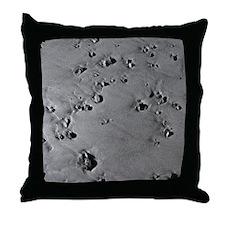California Coast Beach Pebble Throw Pillow