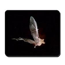 104BAT Mousepad