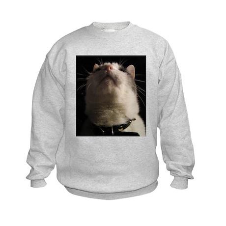 IGOR 101 Kids Sweatshirt