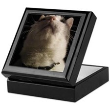 IGOR 101 Keepsake Box