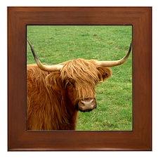 Aberdeen Angus Framed Tile
