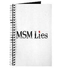 Main Stream Media Lies Journal