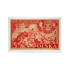Polish Volunteers Rectangle Magnet (10 pack)