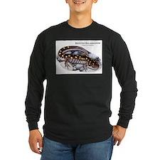 Spotted Salamander T