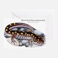 Spotted Salamander Greeting Card