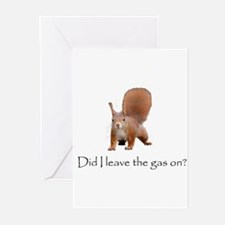 Squirrell Greeting Cards (Pk of 20)
