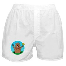 Cartoon Groundhog Boxer Shorts