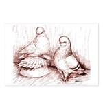 Tumbler Pigeons Postcards (Package of 8)