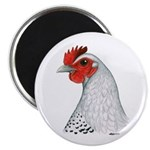"Egyptian Fayoumi Hen 2.25"" Magnet (100 pack)"