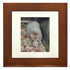 Fancy Rat Shirt Framed Tile