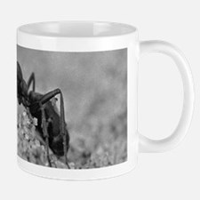 Searching Ant Mug