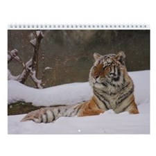 Calendar of Michael Byrnes Wildlife Photography