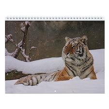 Calendar of Michael Byrnes Wildlife Photography