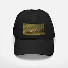 Cheetah Baseball Hat