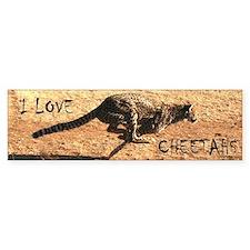 Cheetah Bumper Bumper Sticker