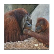 Orangutan Mom and Child Tile Coaster