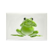 Frog - Hear No Evil! Rectangle Magnet