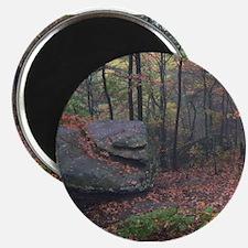 Unique Cumberland Magnet