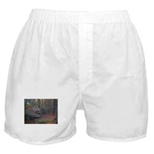 Cute Forest Boxer Shorts
