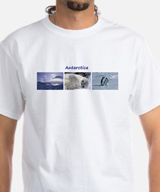 3 Antarctic Pictures - Set 1 Shirt