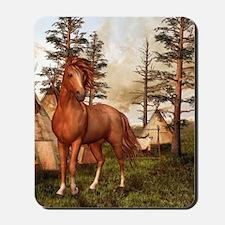 Native American Horse Mousepad