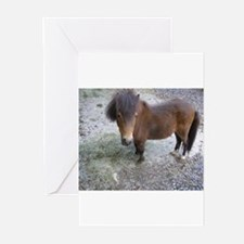 Cute Rescued horse Greeting Cards (Pk of 20)