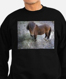 Cute Miniature horse Sweatshirt