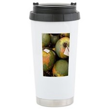 GLOBES 01 Travel Mug