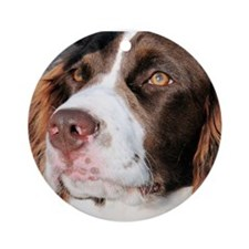 Baxter Photo-6 Ornament (Round)