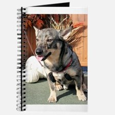 Bear Swedish Vallhund Photo-6 Journal