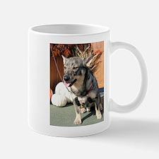 Bear Swedish Vallhund Photo-6 Mug