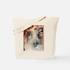 Benny Briard Photo-7 Tote Bag