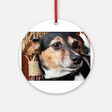 Buddy Fox Terrier Photo-9 Ornament (Round)