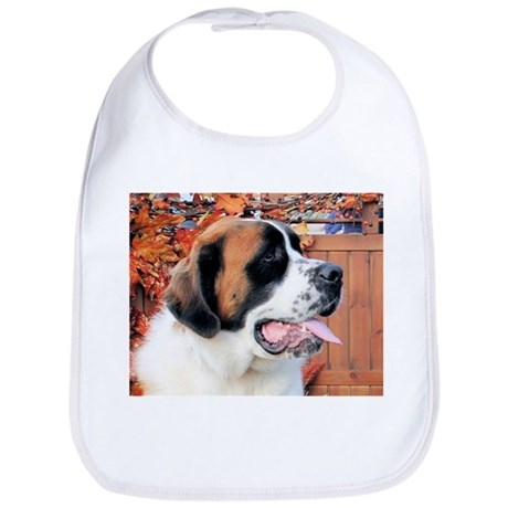 Mae Saint Bernard Photo-6 Bib